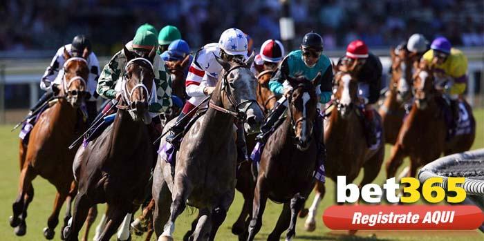 caballos bet365