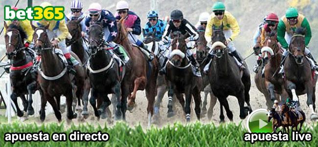 empieza apostar live el las carreras de caballos y recibe 100 euros como bono de binevenida