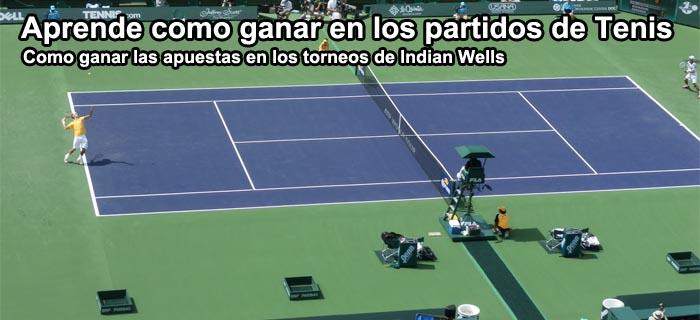 Aprende como ganar en los partidos de Tenis