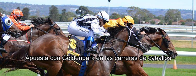 Apuesta con Goldenpark en las carreras de caballos