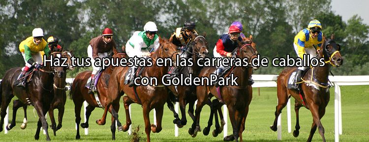 Haz tus apuestas en las carreras de caballos con GoldenPark