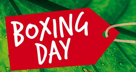 Apuestas deportivas: ¿Qué es el Boxing Day?