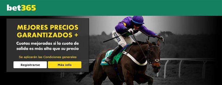 Ver carreras de caballos en directo con Bet365