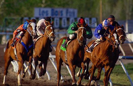 Apuestas caballos: Martingala con favoritos y stop loss en 6
