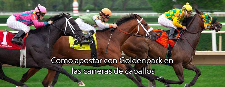 Cómo apostar con GoldenPark en las carreras de caballos
