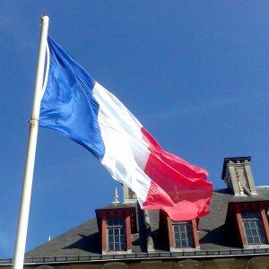 Francia: Promulgará ley en 2010
