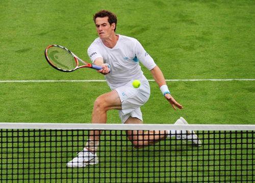 Apuestas interesantes en tenis sobre hierba