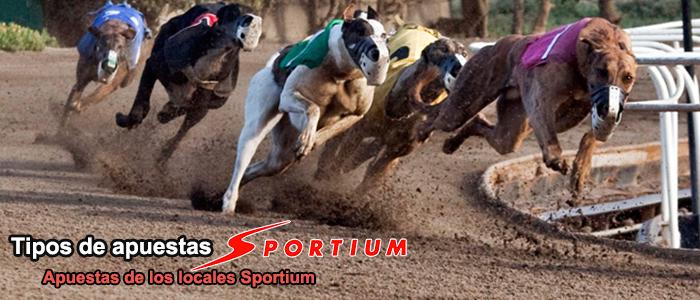 Tipos de apuestas Sportium